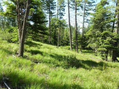 Flathead County Residential Lots & Land For Sale: 279 Hidden Hills Lane
