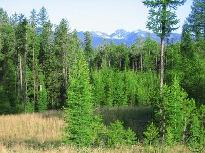 Missoula County Residential Lots & Land For Sale: Lot 4 Stoner Lake Road
