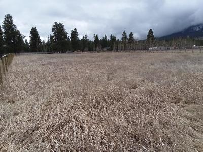 Florence Residential Lots & Land For Sale: Lot 4 592 Sun Valley Road