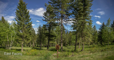Columbia Falls Residential Lots & Land For Sale: 239 Gleneagles Trail