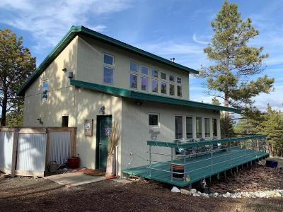 Jefferson County Single Family Home For Sale: 125 Holmes Gulch Road