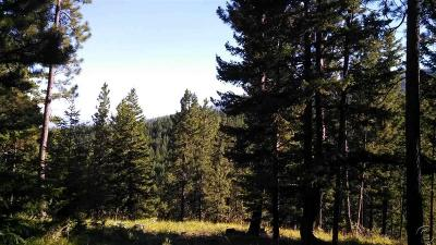 Victor Residential Lots & Land For Sale: 1060 Gash Creek Road