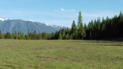 Lincoln County Residential Lots & Land For Sale: Lot 4 Hwy 2