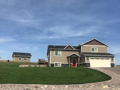 Flathead County Single Family Home For Sale: 957 South View Drive
