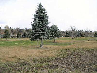 Kalispell Residential Lots & Land For Sale: 156 Palmer Drive