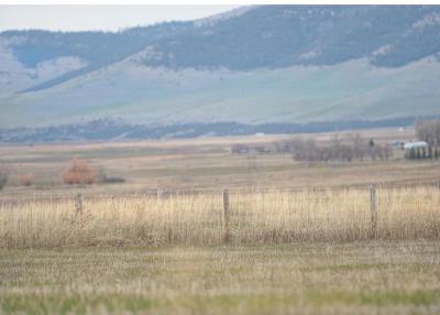 Lake County Residential Lots & Land For Sale: Nhn Cimarron Lane