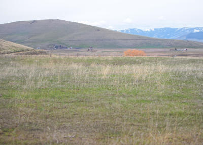 Lake County Residential Lots & Land For Sale: Nhn Cimarron Drive