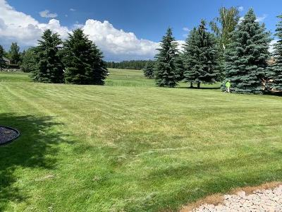 Flathead County Residential Lots & Land For Sale: 215 Bridger Drive