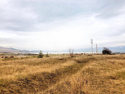 Polson MT Residential Lots & Land For Sale: $480,000