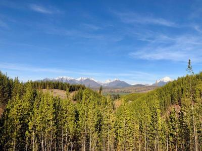 Polebridge, West Glacier Residential Lots & Land For Sale: N.H.N. North Fork Road