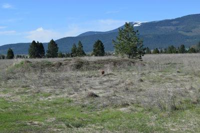 Arlee MT Residential Lots & Land For Sale: $69,000