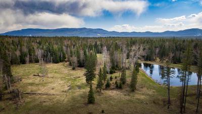 Bigfork Residential Lots & Land For Sale
