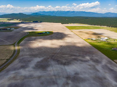 Whitefish Residential Lots & Land For Sale: 1357 Spring Prairie Ranch Road