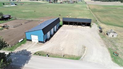 Kalispell Residential Lots & Land For Sale: Nhn Bachelor Grade