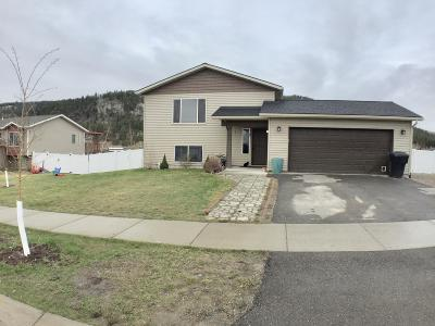 Kalispell Single Family Home For Sale: 382 Bismark Street