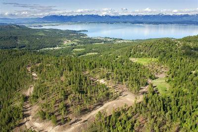 Lakeside Residential Lots & Land For Sale: Nhn Blacktail Heights Road