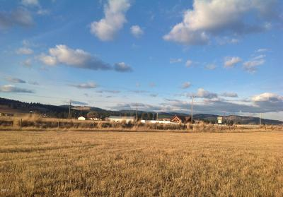 Kalispell Residential Lots & Land For Sale: 111 Big Horn Drive