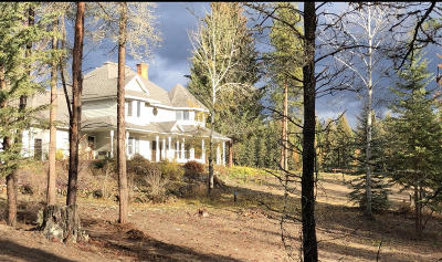Whitefish Single Family Home For Sale: 249 Wollan Way