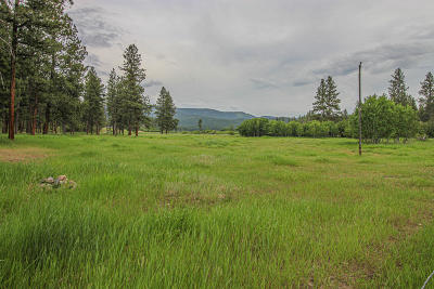 Bonner, Potomac Residential Lots & Land For Sale: Nhn Washoe Road