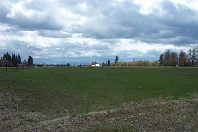 Columbia Falls Residential Lots & Land Under Contract Taking Back-Up : Nhn South Hilltop Road