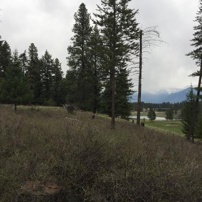 Bigfork Residential Lots & Land Under Contract Taking Back-Up : 1088 Silvertip Drive North