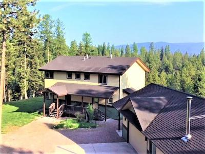 Seeley Lake Single Family Home For Sale: 1677 Grandview Drive