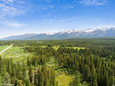 Condon, Potomac, Seeley Lake Residential Lots & Land For Sale: 6180 Hwy 83