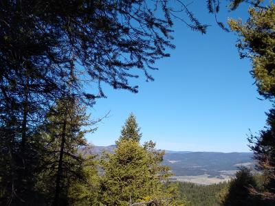 Kalispell Residential Lots & Land For Sale: Nhn Haywire Gulch