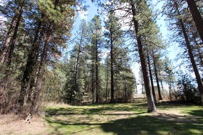 Kalispell Residential Lots & Land For Sale: 312 Ponderosa Lane