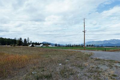 Columbia Falls Residential Lots & Land For Sale: 4440 Montana Hwy 40 West