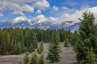 Kalispell Residential Lots & Land For Sale: 5110 Mt-35