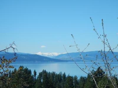 Bigfork Residential Lots & Land For Sale: 23050 Yellow Bay Lane