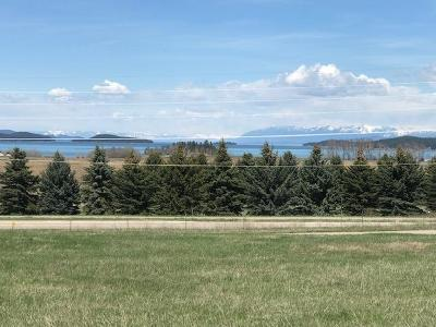 Polson Residential Lots & Land For Sale: 36171 Acre View Drive