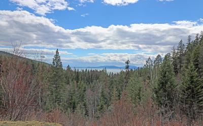 Bigfork Residential Lots & Land For Sale: 32062 Birch Tree Drive