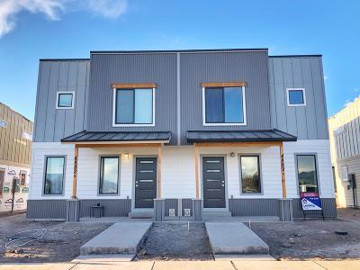 Missoula Single Family Home For Sale: 4894 Giada Drive