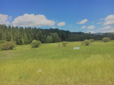 Columbia Falls Residential Lots & Land Under Contract Taking Back-Up : 3215 Mt Highway 40 West