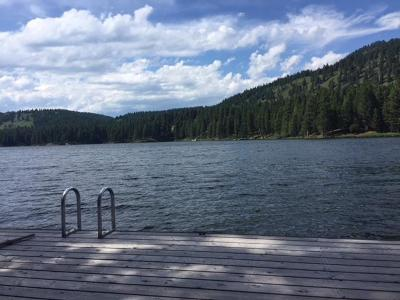 Seeley Lake Single Family Home For Sale: 454 Access Road