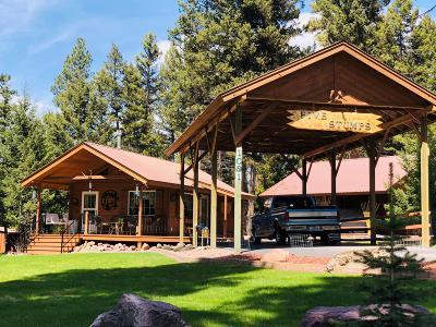 Seeley Lake Single Family Home For Sale: 1091 Tamarack Drive