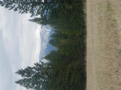Columbia Falls Residential Lots & Land Under Contract Taking Back-Up : 1084 Sawtooth Trail
