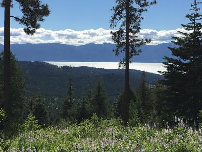 Lake County Residential Lots & Land For Sale: 42800 Big Lodge Lane