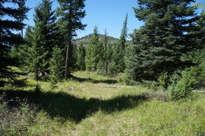Kila Residential Lots & Land Under Contract Taking Back-Up : 285 Forest Ridge Trail