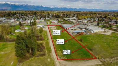 Kalispell Residential Lots & Land For Sale: Nhn Hidden Buck Meadows Lane