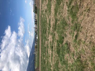 Stevensville Residential Lots & Land For Sale: Lot 14 Valhalla Ranch Estates