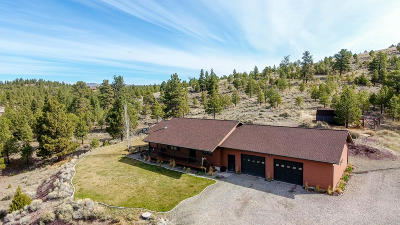 Helena Single Family Home For Sale: 1100 Woodland Hills Road