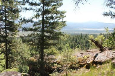 Kalispell Residential Lots & Land For Sale: Tract 3 North Ranch Hill Road