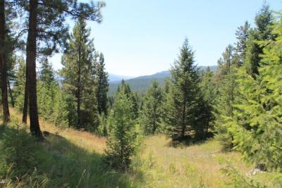 Kalispell Residential Lots & Land For Sale: Tract 2 North Ranch Hill Road