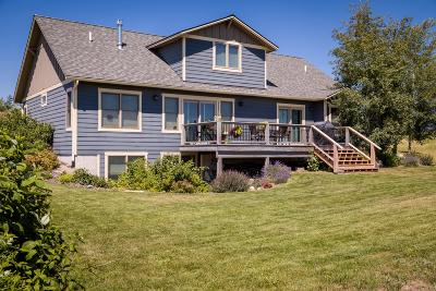 Lake County Single Family Home For Sale: 102 Yellowstone Court