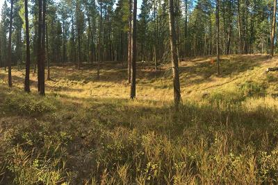 Flathead County Residential Lots & Land Under Contract Taking Back-Up : 232 Colter