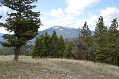 Flathead County Residential Lots & Land For Sale: Tr 3aadb Jackson Meadow Road