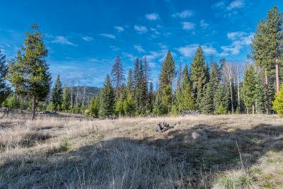 Condon, Potomac, Seeley Lake Residential Lots & Land For Sale: Nhn Shoreline Court